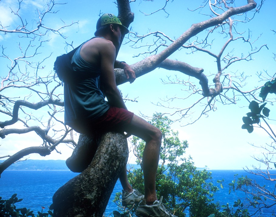 Sitting in a tree above the ocean after emerging from Crystal Cave