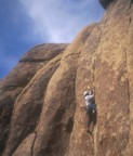 In the midst of the crux at Sheepbugger's Wall; the difficulty here is that the protection is at your feet while making the crux .11 moves�below that is a ledge!