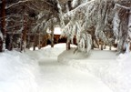 Winter '93 -- the driveway had to be shoveled by hand because no plow could move that much snow; the shoveling took three days